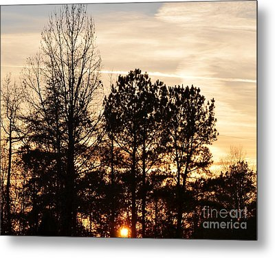 A Winter's Eve Metal Print by Maria Urso