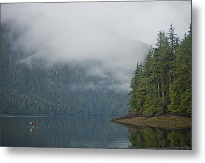 A Woman Kayaks Along A Quiet Inlet Metal Print by Taylor S. Kennedy