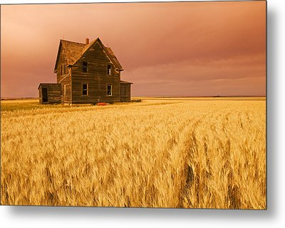 Abandoned Farm House, Wind-blown Durum Metal Print by Dave Reede