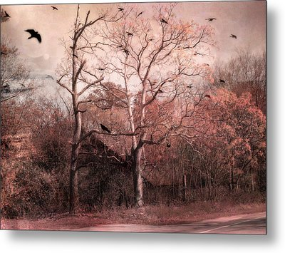 Abandoned Haunted Barn With Crows Metal Print by Kathy Fornal