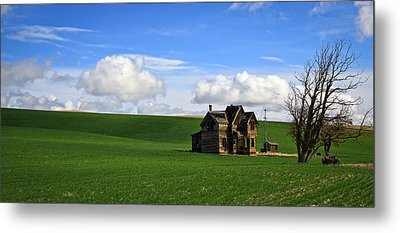 Abandoned House On Green Pasture Metal Print by Steve McKinzie