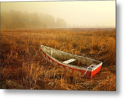 Metal Print featuring the photograph Abandoned by Karen Lynch