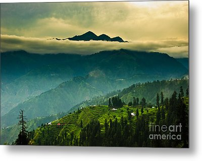 Above Clouds Metal Print by Syed Aqueel