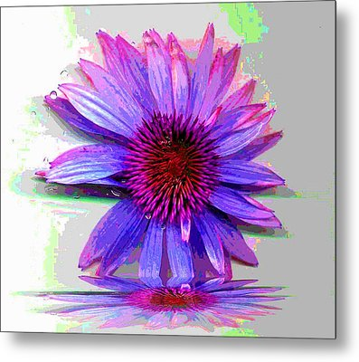 Metal Print featuring the photograph Abstract Daisy by Carolyn Repka