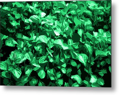 Metal Print featuring the photograph Abstract Greeen by Serene Maisey