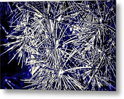 Abstract Nature 3 Metal Print
