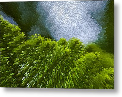 Abstract Pine Metal Print by Serene Maisey