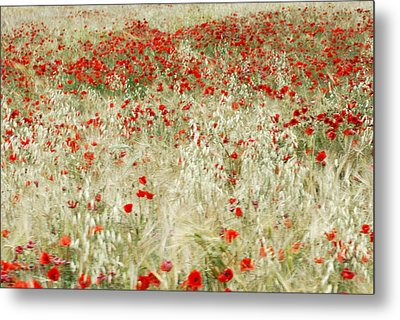 Abstract Poppies Metal Print by Guido Montanes Castillo