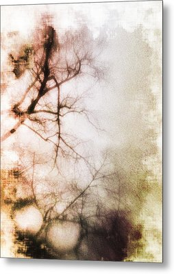 Abstract Trees Metal Print by David Ridley