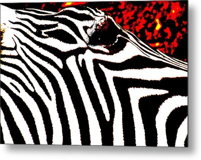 Abstract Zebra 001 Metal Print by Lon Casler Bixby