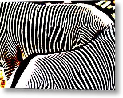 Abstract Zebra 002 Metal Print by Lon Casler Bixby