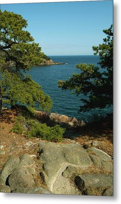 Acadia In Maine Metal Print by Rick Frost