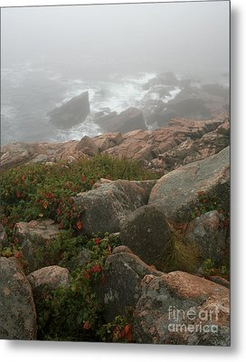 Acadia National Park Foggy Coast Metal Print by Chris Hill