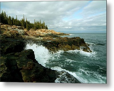 Acadia On The Shore Metal Print by Rick Frost