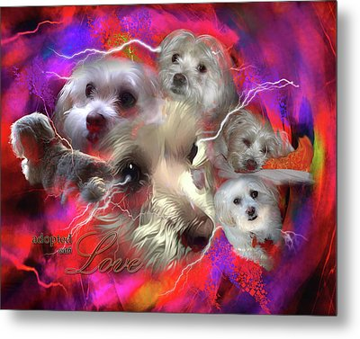 Adopted With Love Metal Print by Kathy Tarochione