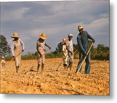 African American Men And Women Chopping Metal Print by Everett