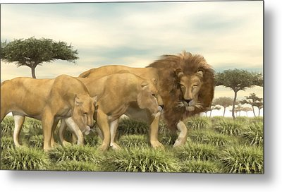 Metal Print featuring the painting African Lion Pride by Walter Colvin
