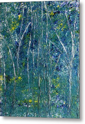 After Monet Metal Print by Dolores  Deal