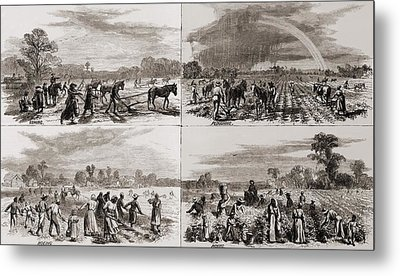 After The Civil War Many African Metal Print by Everett