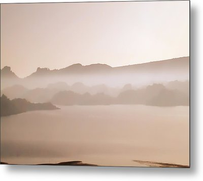 Metal Print featuring the photograph After The Fire by James Bethanis