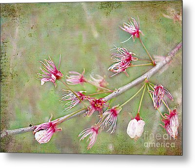 After The Party's Over Metal Print by Judi Bagwell