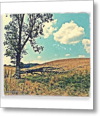 After The Storm Metal Print by Mari Posa