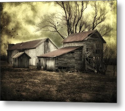 Metal Print featuring the photograph After The Storm by Mary Timman