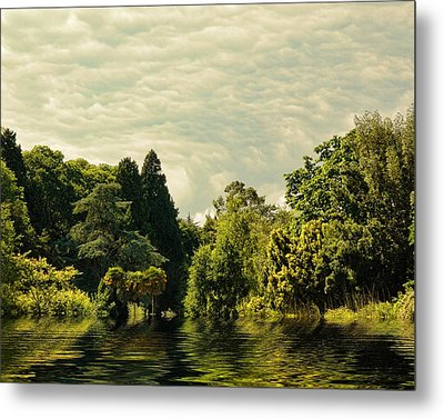 After The Storm Metal Print by Sharon Lisa Clarke