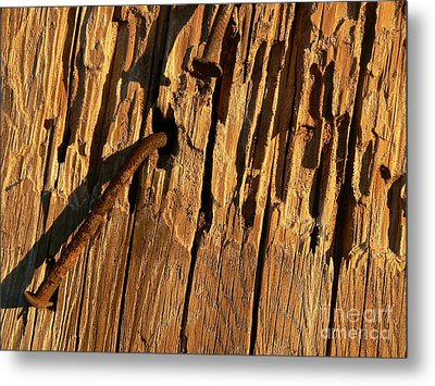 Metal Print featuring the photograph Against The Grain by Lin Haring