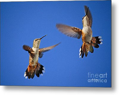 Air Dance Metal Print