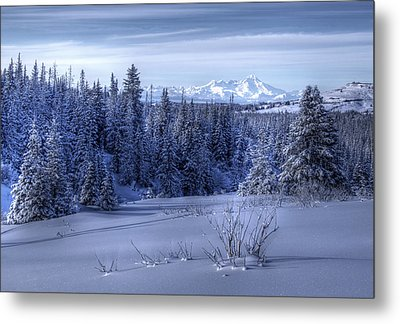 Metal Print featuring the photograph Alaskan Winter Landscape by Michele Cornelius