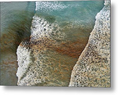 Algal Bloom Metal Print by Peter Chadwick