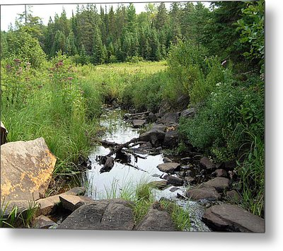Algonquin Odes Five Metal Print by Alan Rutherford