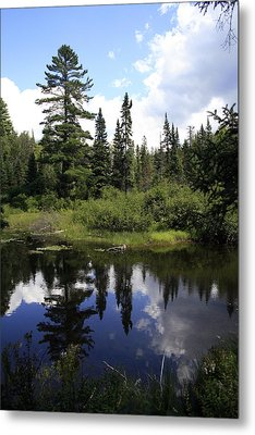 Algonquin Odes Two Metal Print by Alan Rutherford