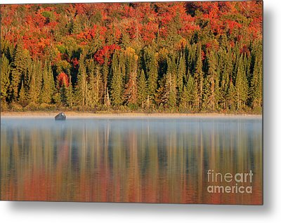 Algonquin Reflections Metal Print by Chris Hill