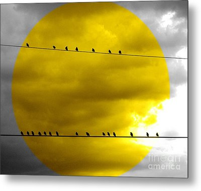 Metal Print featuring the photograph All Around The World by France Laliberte