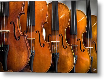 Metal Print featuring the photograph All In A Row by Endre Balogh
