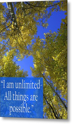 All Things Are Possible Metal Print by Dana Kern