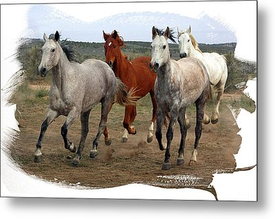 Metal Print featuring the photograph All Up In The Air by Judy Deist