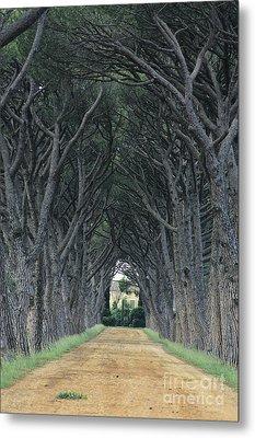 Alley . Provence Metal Print by Bernard Jaubert