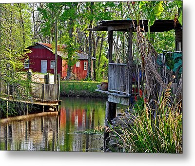 Metal Print featuring the photograph Alligator Bayou by Helen Haw