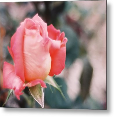Metal Print featuring the photograph Almost Ready by Lynnette Johns