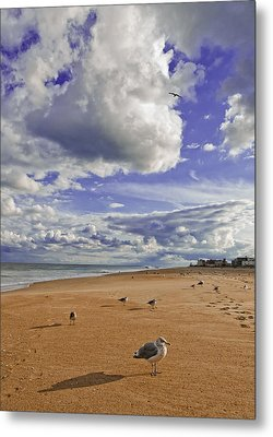 Alone At Last Metal Print