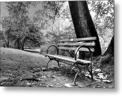 Alone In The Park Metal Print by Sarai Rachel