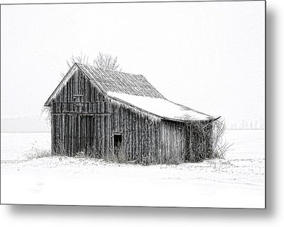 Metal Print featuring the photograph Alone In The Snow by Mary Timman