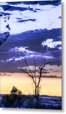 Metal Print featuring the photograph Alone by Marta Cavazos-Hernandez
