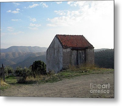 Metal Print featuring the photograph Alone On The Hill by Arlene Carmel