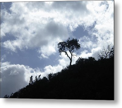 Metal Print featuring the photograph Alone by Sandra Phryce-Jones