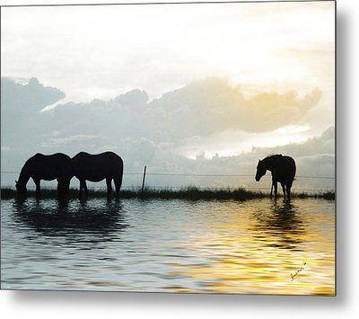 Alone Metal Print by Susan Kinney