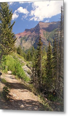 Along St. Mary's Lake Trail Metal Print by Marty Koch